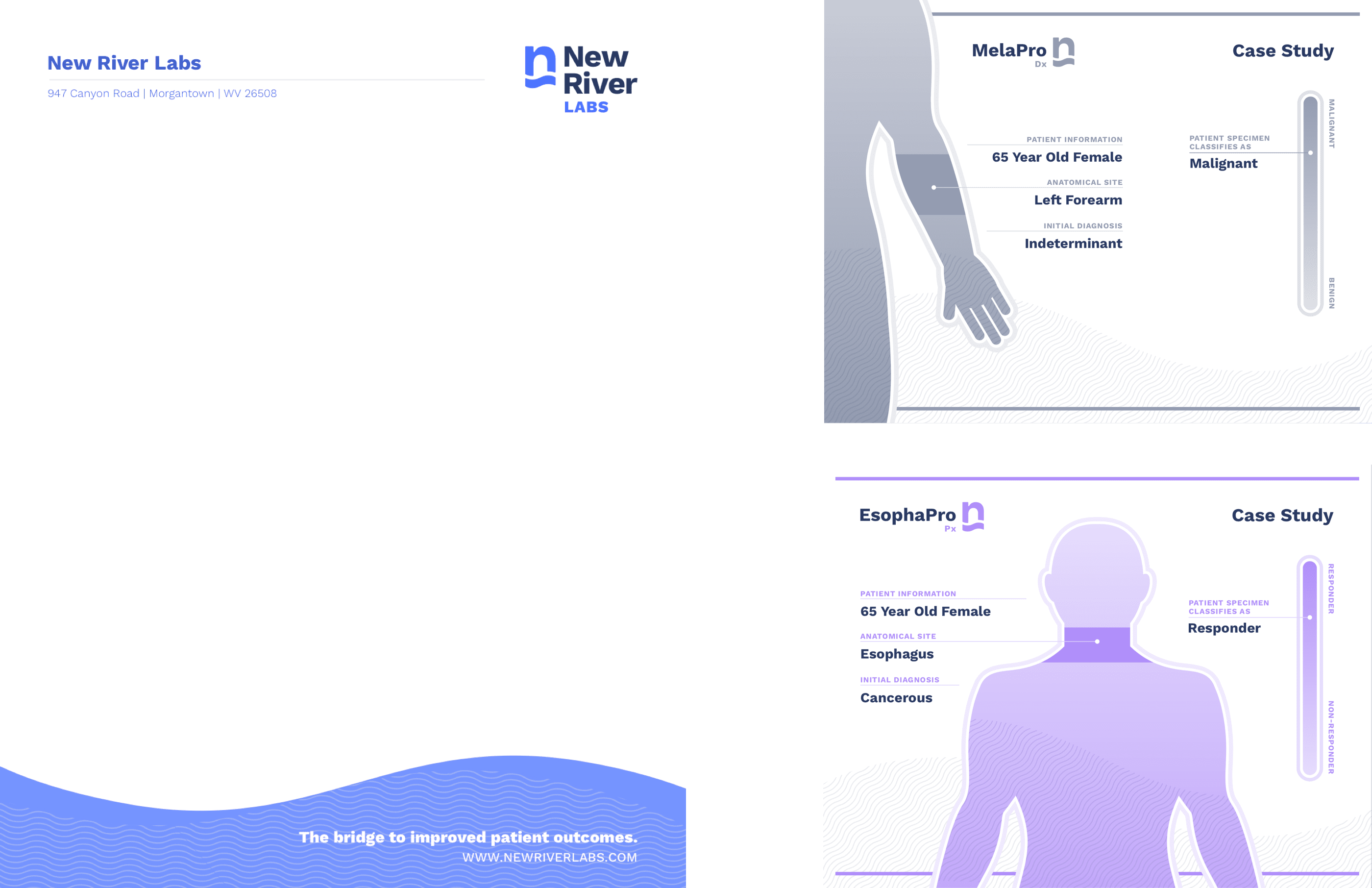 New River Labs letterhead and case study designs