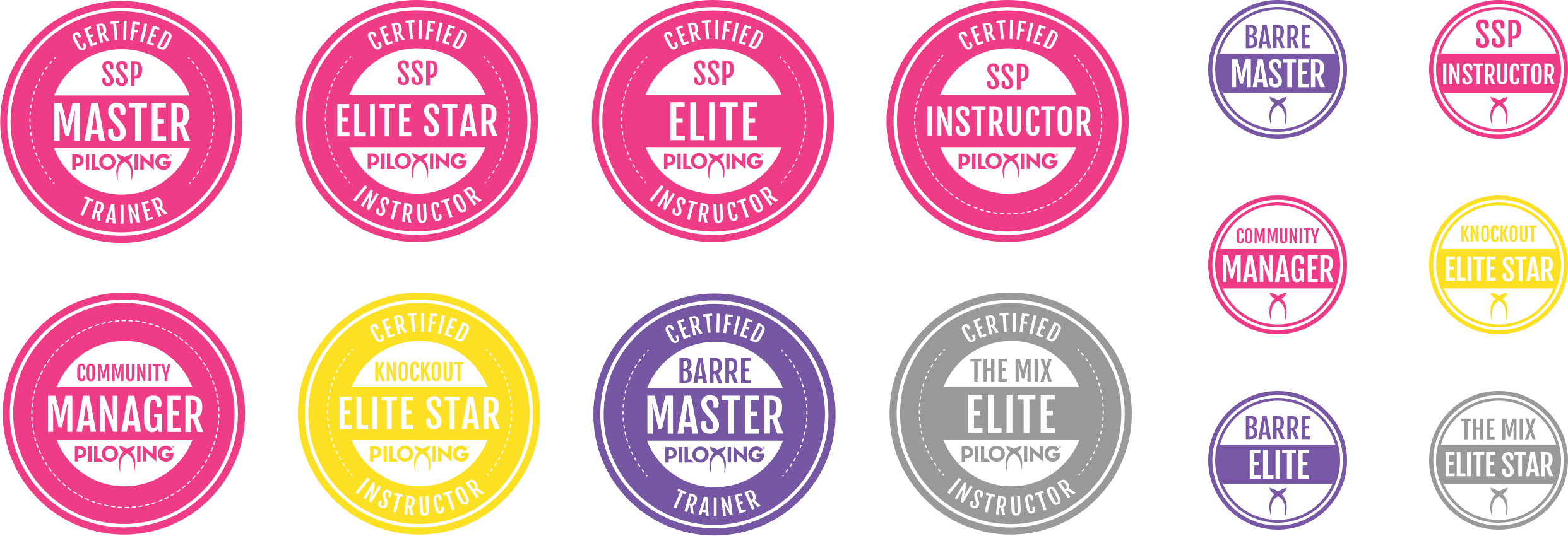 Custom illustrated instructor level badges for social profiles