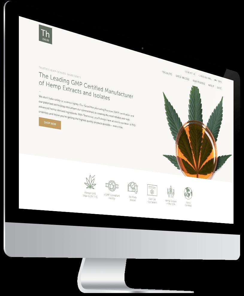 treehouse-custom-website-design-desktop-left-1